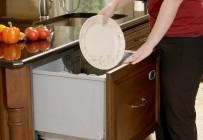 bac dish wash 2